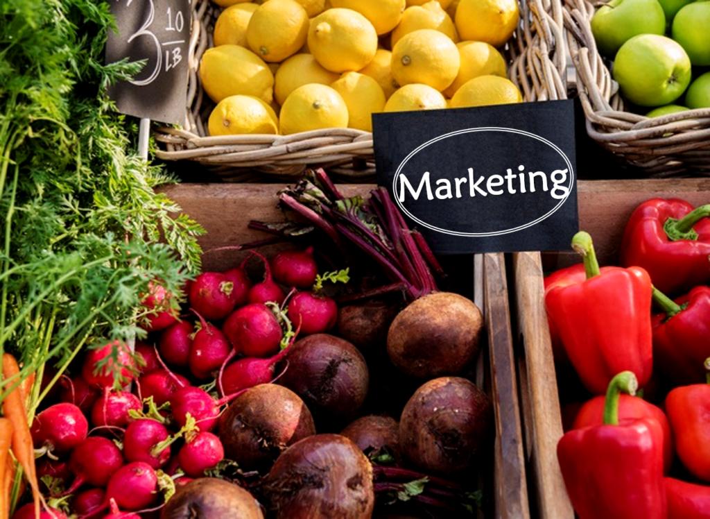 マーケティング戦略とは?具体事例からマーケティングの基礎を学ぶ
